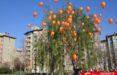 Ataşehir Belediyesi Mirabel kardeşleri unutmadı